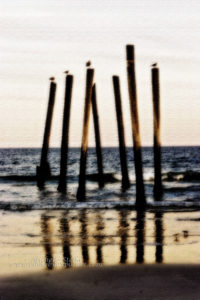 Photography By Exposure, www.photobyexposure.com, beach photographer, Ocean City, New Jersey photographer, outdoors, family, children, sunrise & sunset photography, family beach portraits, surf photos, surfing, South Jersey photographer